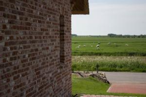 Ferienhaus Mai 2016 Außenansichten-93